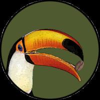[Kaffeepur.ch] Logo Assemblage5